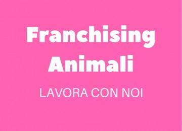 Franchising Animali, NON aprire un negozio per animali, franchising da casa