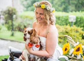 BIKER BRIDE WEDDING DOG SITTER