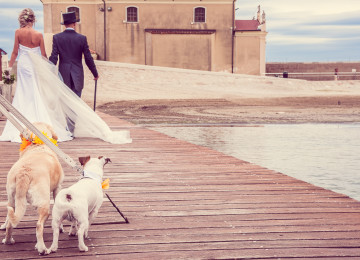 MATRIMONIO A CAORLE VENEZIA CON IL CANE WEDDING DOG