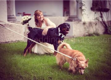 SPOSA CON ROTTWEILER AL MATRIMONIO CON PAPILLON CRAVATTINOwww.emotionalphotographer.com_weddinginbrianza (367 di 694)