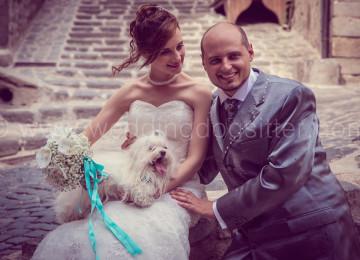 SPOSI CON IL CANE PUGLIA WEDDING DOG