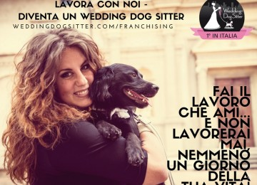 Lavorare con i cani, il dog sitter per matrimoni! Wedding Dog Sitter Franchising