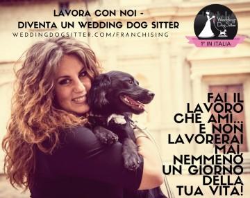 LAVORARE CON I CANI Wedding Dog Sitter