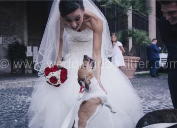 SPOSI CON IL CANE A ROMA FOTO WEDDING DOG