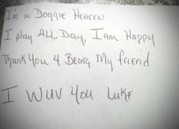Il suo cane muore, bimbo gli scrive e arriva risposta