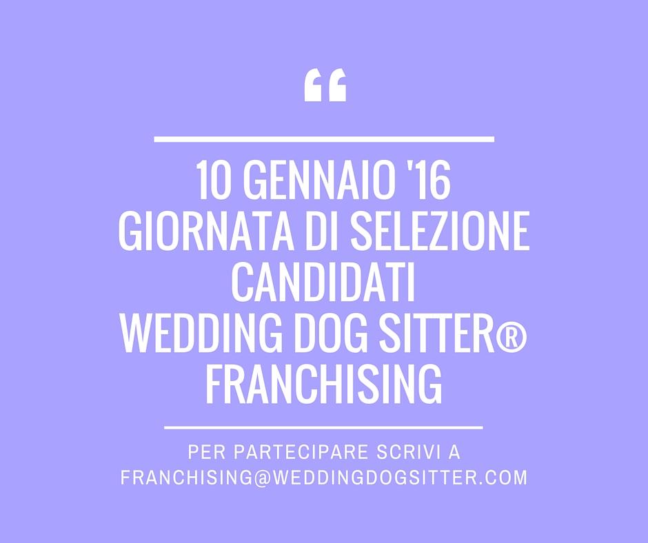 Aprire un franchising di animali wedding dog sitter for Lavorare con i cani