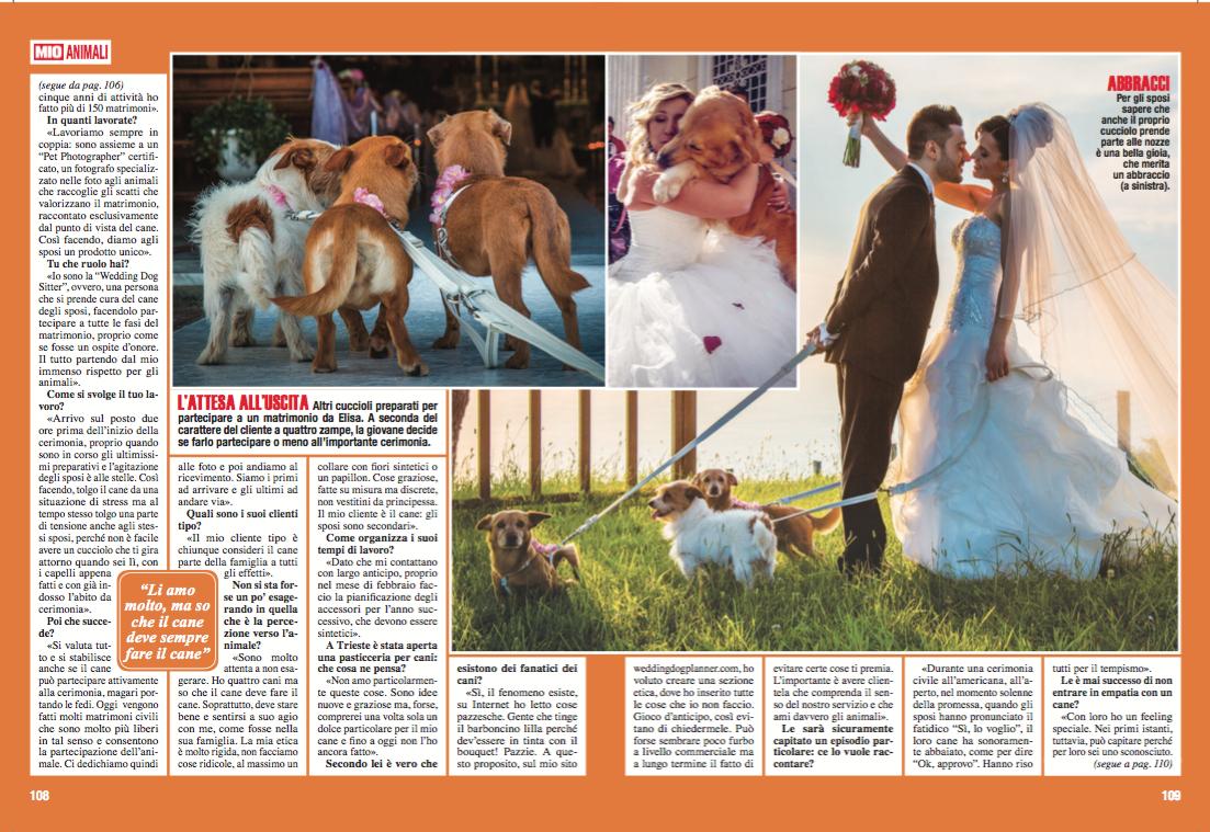 Wedding Dog Sitter intervista