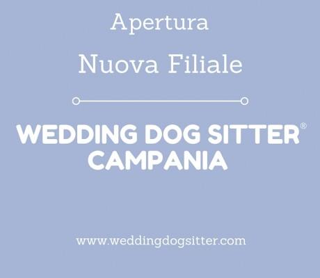 APERTURA FILIALE WEDDING DOG SITTER IN CAMPANIA