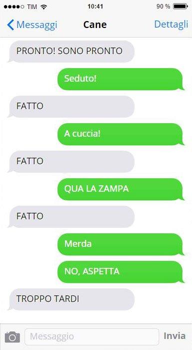 cane-messaggi-stupendo-12