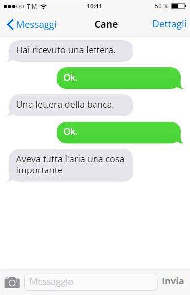 cane-messaggi-stupendo-16