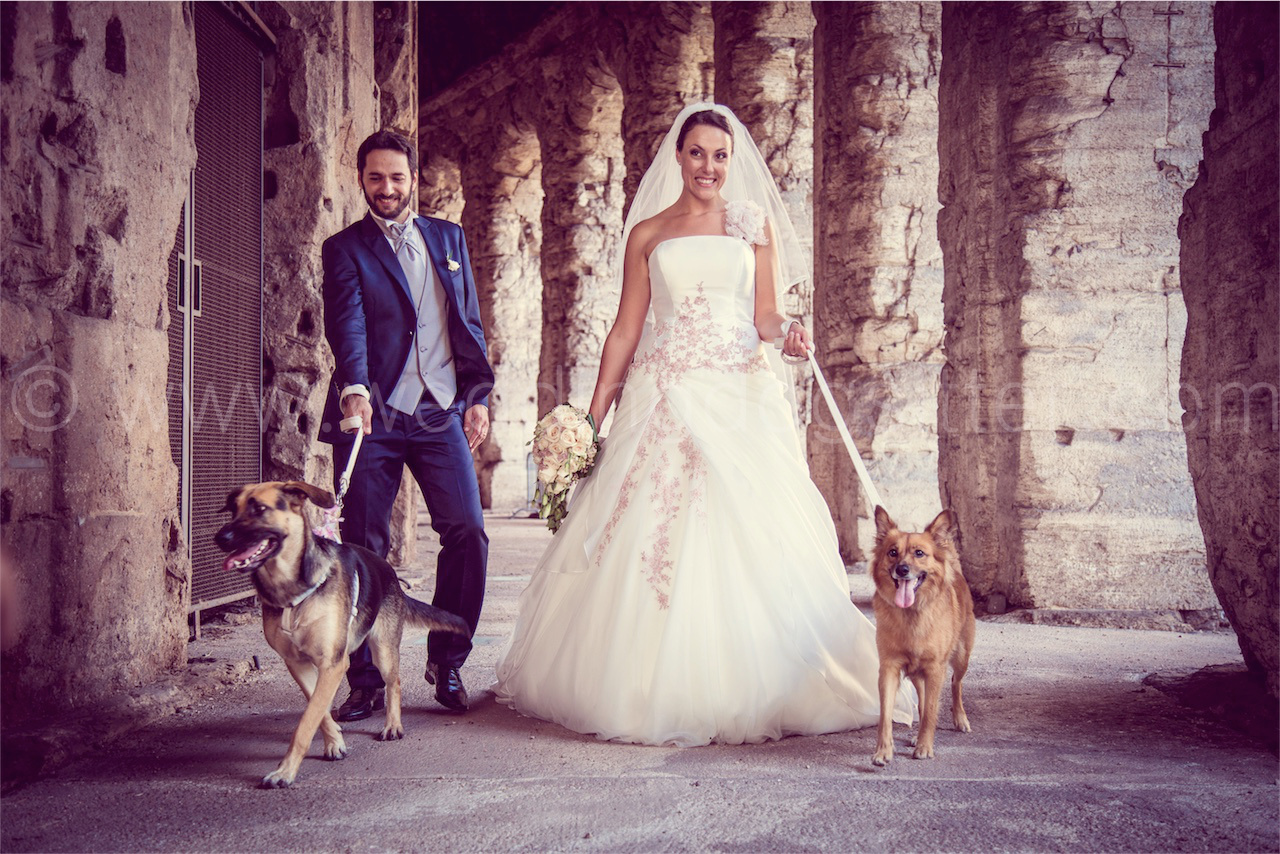 Matrimonio In Tedesco : Raksha e lilly due cani al matrimonio a roma wedding dog sitter