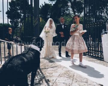 wedding dog sitter a taranto matrimonio fotografo con il cane