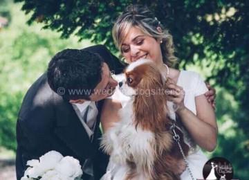 cani al matrimonio Asti Wedding Dog Sitter Torino