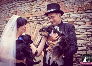 Sposarsi in seconde nozze e portare il cane al matrimonio