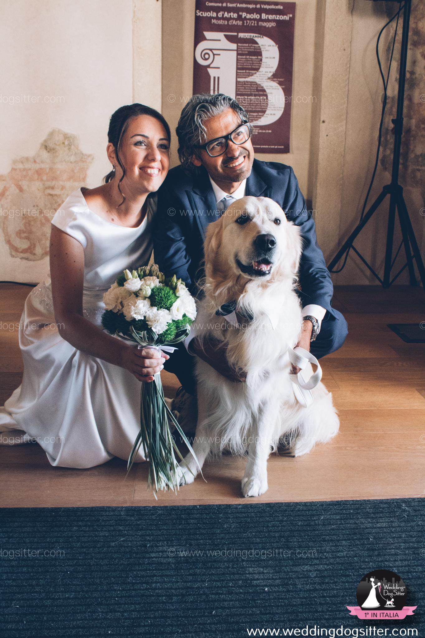 Il cane al matrimonio a Verona