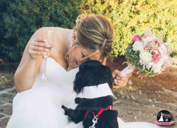 www.weddingdogsitter.com-matrimonio-con-il-cane-portare-foto-Viterbo-Lazio-130
