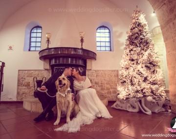 www.weddingdogsitter.com-foto-matrimonio-con-il-cane-taranto-107