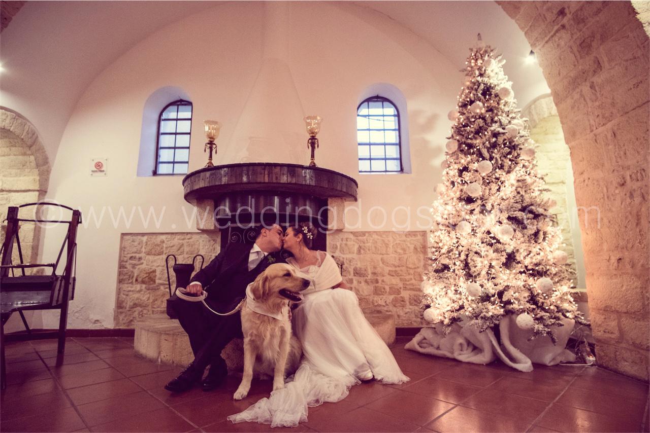 www.weddingdogsitter.com-foto-matrimonio-con-il-cane-taranto-109