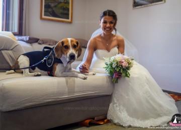 matrimonio incisa 17-06-2018  (133) (1)