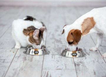 Uno di Famiglia il cibo per cani che nutre il microbiota intestinale!