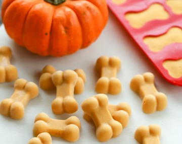 pumpkin-dog-treats-2