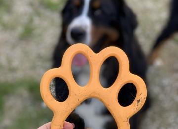 Giochi e Articoli per cani di Bama