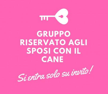 Gruppo Facebook riservato SPOSI CON IL CANE