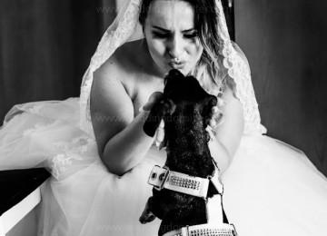 www.weddingdogsitter.com_sposa con il cane